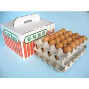 赤卵60個入り