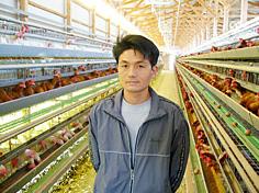鶏の飼育へのこだわり